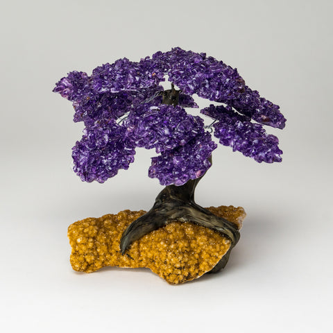 Large Amethyst Clustered Gemstone Tree on Citrine Matrix (The Empowerment Tree)