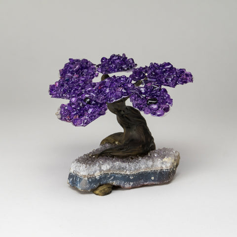 Medium Genuine Amethyst Clustered Gemstone Tree on White Quartz Matrix (The Relaxation Tree)
