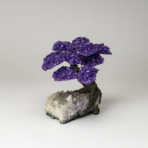 Large Genuine Amethyst Clustered Gemstone Tree on White Quartz Matrix (The Relaxation Tree)