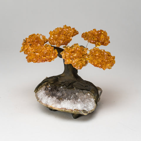 Small Citrine Clustered Gemstone Tree on White Quartz Matrix (the Money Tree)