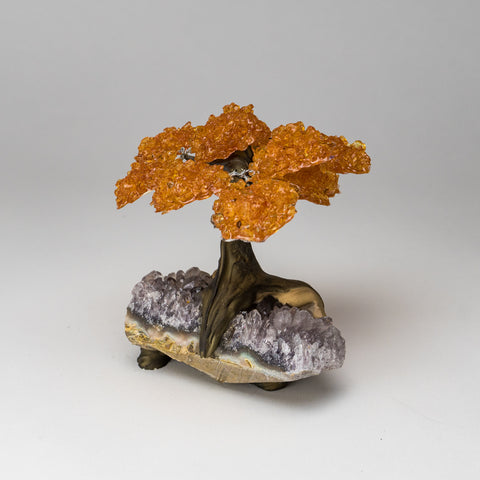 Medium Citrine Clustered Gemstone Tree on White Quartz Matrix (The Money Tree)