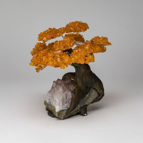Large Citrine Clustered Gemstone Tree on White Quartz Matrix (The Tree of Prosperity)