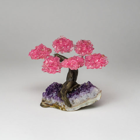 Small Genuine Rose Quartz Clustered Gemstone Tree on Amethyst Matrix (The Love Tree)