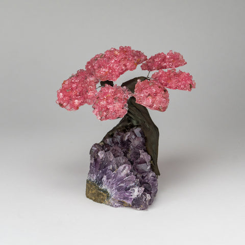 Medium - Genuine Rose Quartz Clustered Gemstone Tree on Amethyst Matrix (The Love Tree)