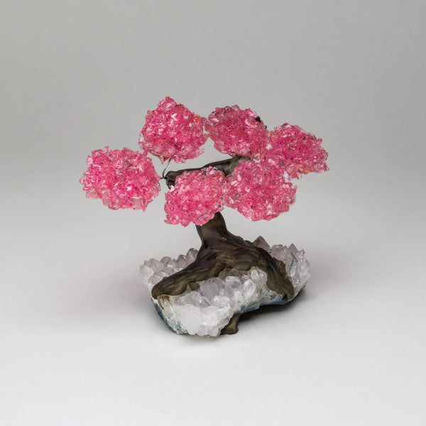 Small Genuine Rose Quartz Clustered Gemstone Tree on White Quartz Matrix (The Wellness Tree)