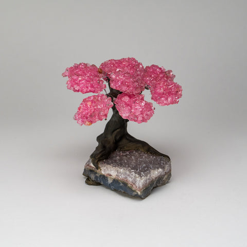 Medium - Genuine Rose Quartz Clustered Gemstone Tree on Clear Quartz Matrix (The Wellness Tree)