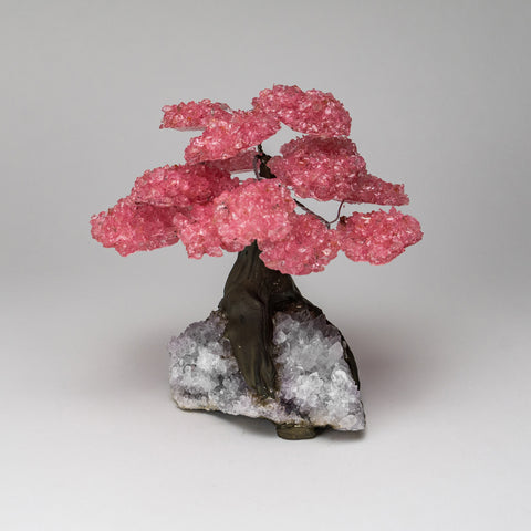 Large - Genuine Rose Quartz Clustered Gemstone Tree on Clear Quartz Matrix (The Wellness Tree)