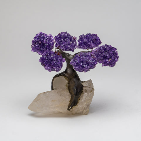 Small Genuine Amethyst Clustered Gemstone Tree on Clear Quartz Crystal Base (The Restoration Tree)