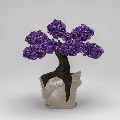 Medium Genuine Amethyst Clustered Gemstone Tree on Clear Quartz Matrix (The Restorative Tree)