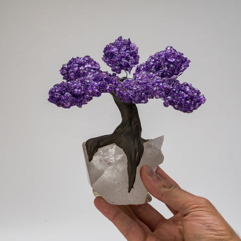 Medium - Genuine Amethyst Clustered Gemstone Tree on Quartz Crystal Matrix (The Harmony Tree)
