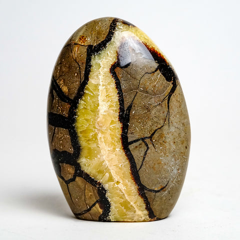 Polished Septarian Freeform from Madagascar (1.33 lbs)