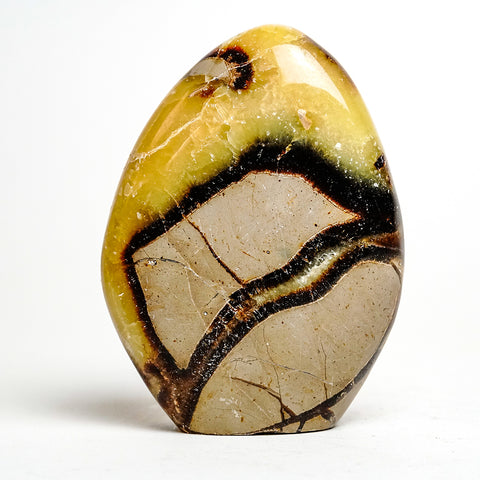 Polished Septarian Freeform from Madagascar (1.4 grams)