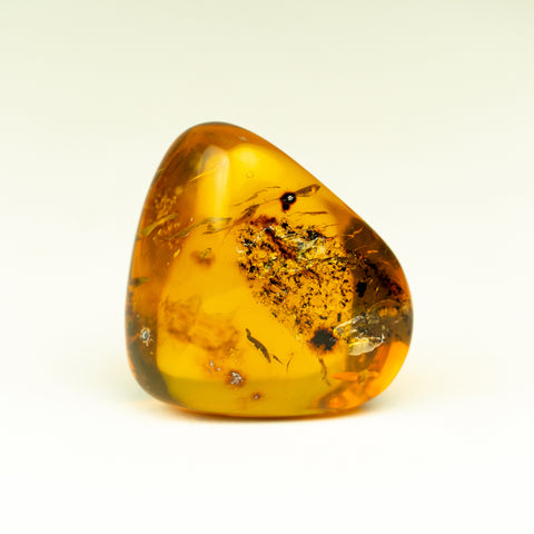 Amber from Chiapas, Mexico (18.4 grams)