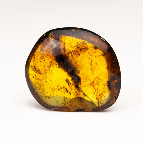 Amber from Chiapas, Mexico (14.3 grams)