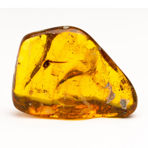 Amber from Chiapas, Mexico (26.4 grams)