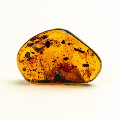 Amber from Chiapas, Mexico (15 grams)