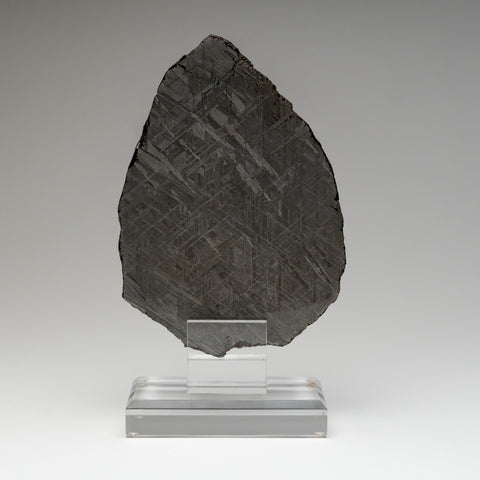 Genuine Muonionalusta Meteorite Slice (660.9 grams)