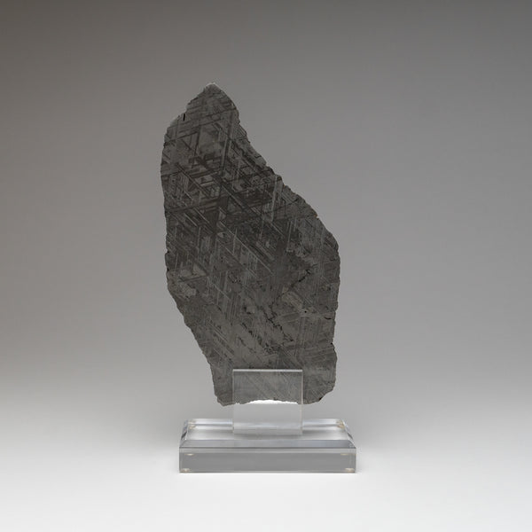 Genuine Muonionalusta Meteorite Slice (761.2 grams)