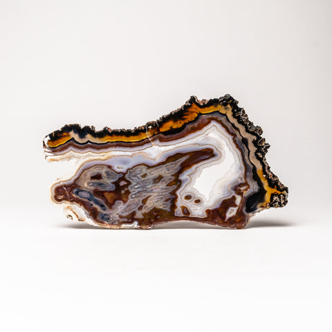 Polished Natural Banded Geode Agate Slice from Brazil (263.6 grams)