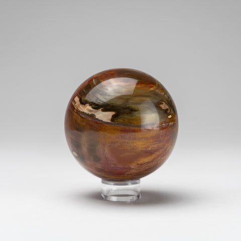 "Polished Petrified Wood Sphere from Madagascar (3"", 538.2 grams)"
