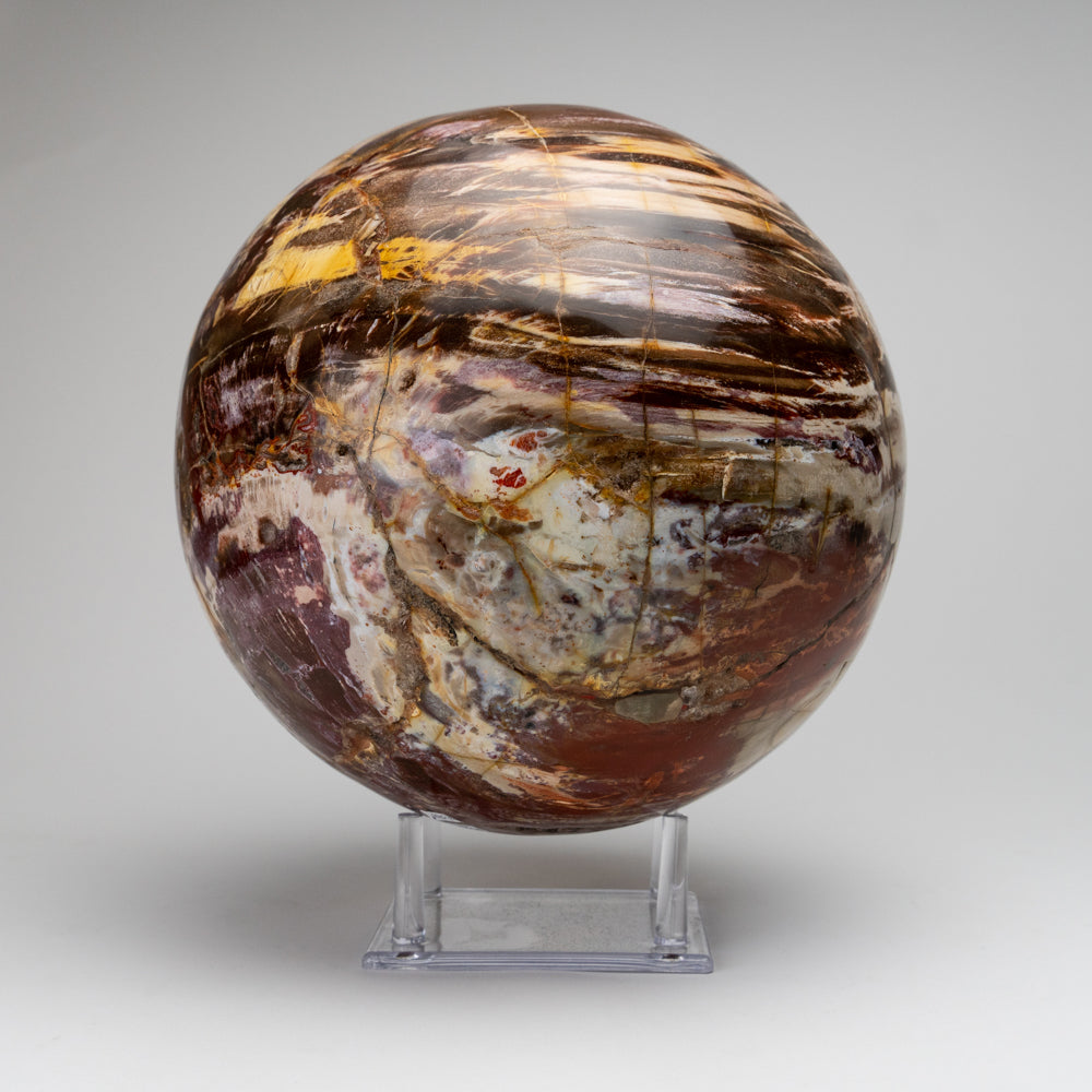 "Polished Petrified Wood Sphere from Madagascar (9"", 39 lbs)"