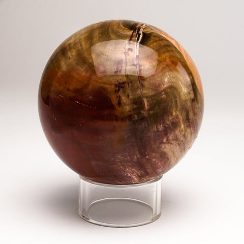 "Polished Petrified Wood Sphere from Madagascar (3.5"", 2.5 lbs)"
