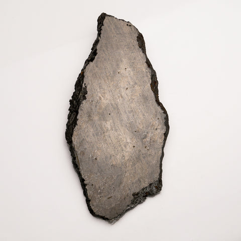 Genuine Muonionalusta Meteorite Slice (584.7 grams)