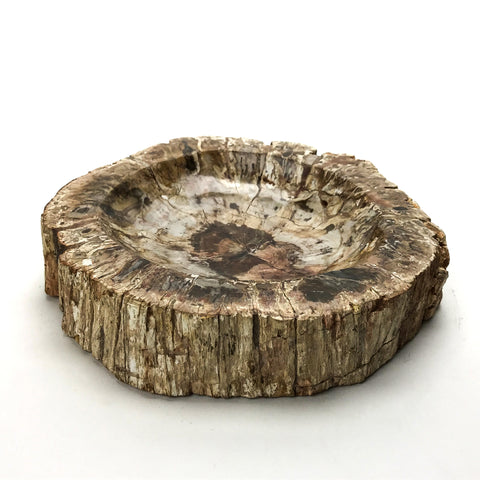 Petrified Wood Bowl from Madagascar
