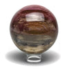 Arizona Rainbow Petrified Wood Sphere (2.8