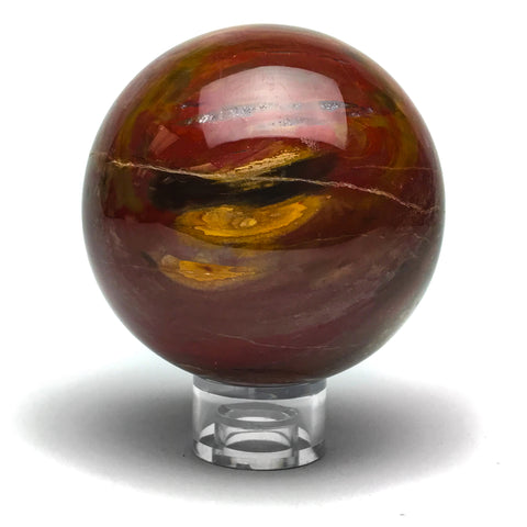Arizona Rainbow Petrified Wood Sphere (4.2