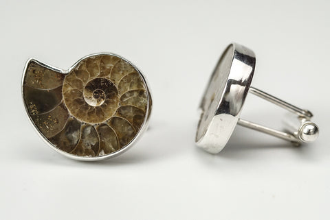 Ammonite Cufflinks - Astro Gallery