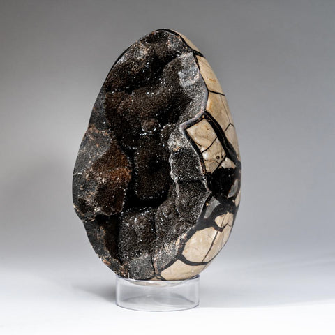 Septarian Druzy Geode Egg from Madagascar (10.8 lbs)