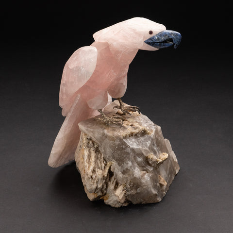 Large Polished Hand Carved Rose Quartz Parrot on Smoky Quartz Matrix