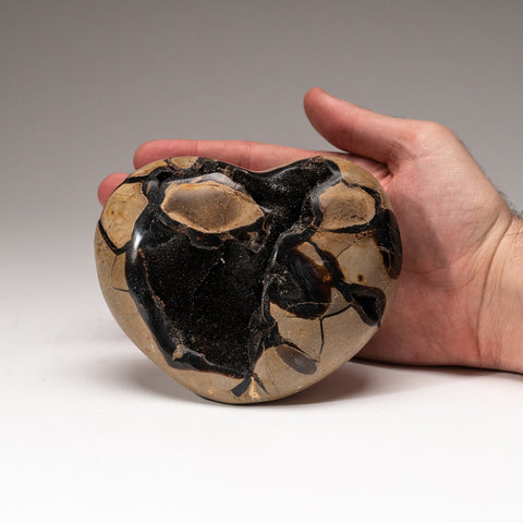 Septarian Druzy Heart from Madagascar (2.4 lbs)