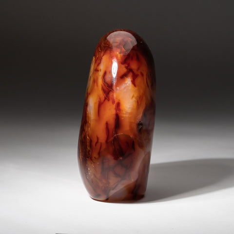 Carnelian Agate Flame Freeform from Madagascar (6.2 lbs)