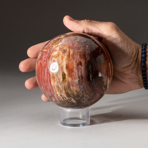 "Polished Petrified Wood Sphere from Madagascar (3.5"", 3.4 lbs)"