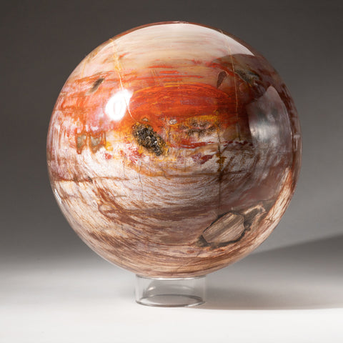 "Polished Petrified Wood Sphere from Madagascar (8.5"", 31.5 lbs)"