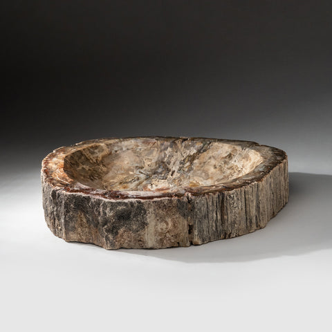 Petrified Wood Bowl from Madagascar (16 lbs)