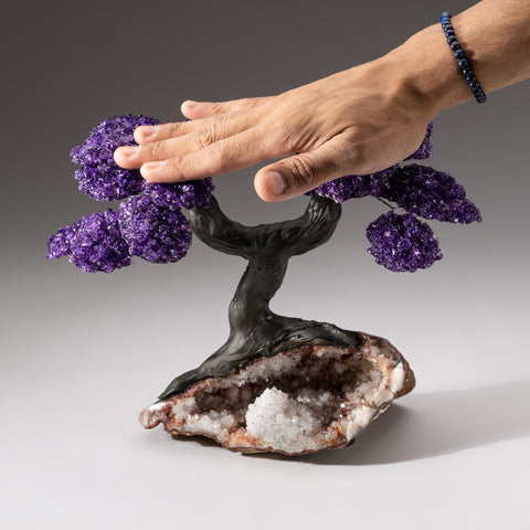 Genuine Custom Amethyst Clustered Gemstone Tree on Red Quartz Matrix