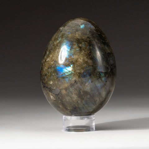 Polished Labradorite Egg from Madagascar (.8 lbs)