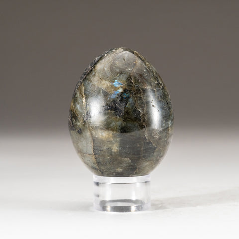 Polished Labradorite Egg from Madagascar (.6 lbs)