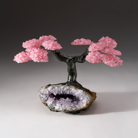 Genuine Custom Rose Quartz Clustered Gemstone Tree on Amethyst Matrix (The Protection Tree)