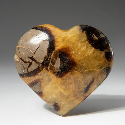 Polished Septarian Heart From Mexico (.4 lbs)