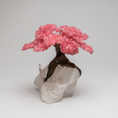 Large - Genuine Rose Quartz Clustered Gemstone Tree on a Quartz Crystal Matrix (The Tree of Light)