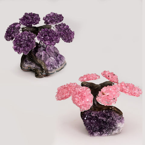 Small Two Set of Gemstone Trees (6 petals) on Amethyst Matrix