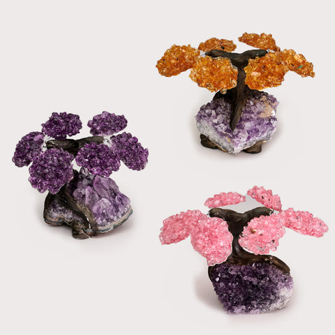 Small Three Set of Gemstone Trees (6 petals) on Amethyst Matrix