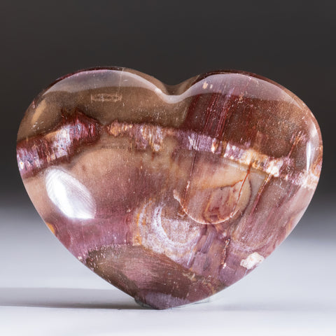 Petrified Wood Heart from Madagascar (250 grams)