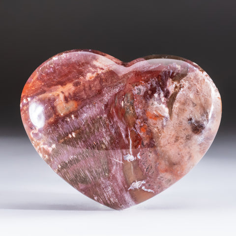 Petrified Wood Heart from Madagascar (298 grams)