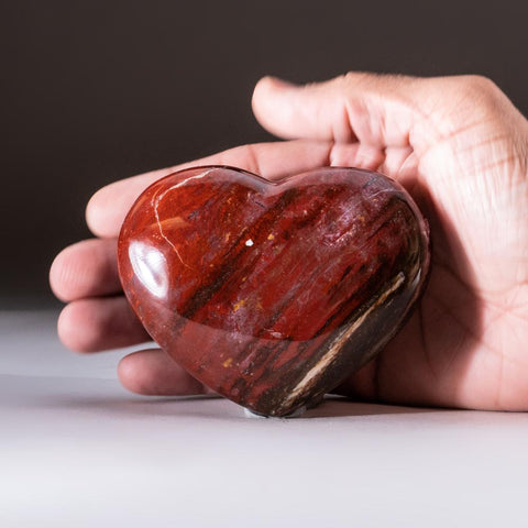 Petrified Wood Heart from Madagascar (230 grams)