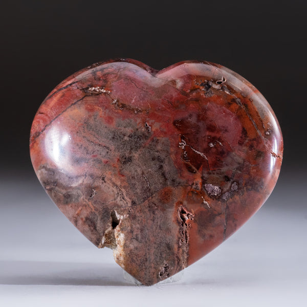 Petrified Wood Heart from Madagascar (193 grams)